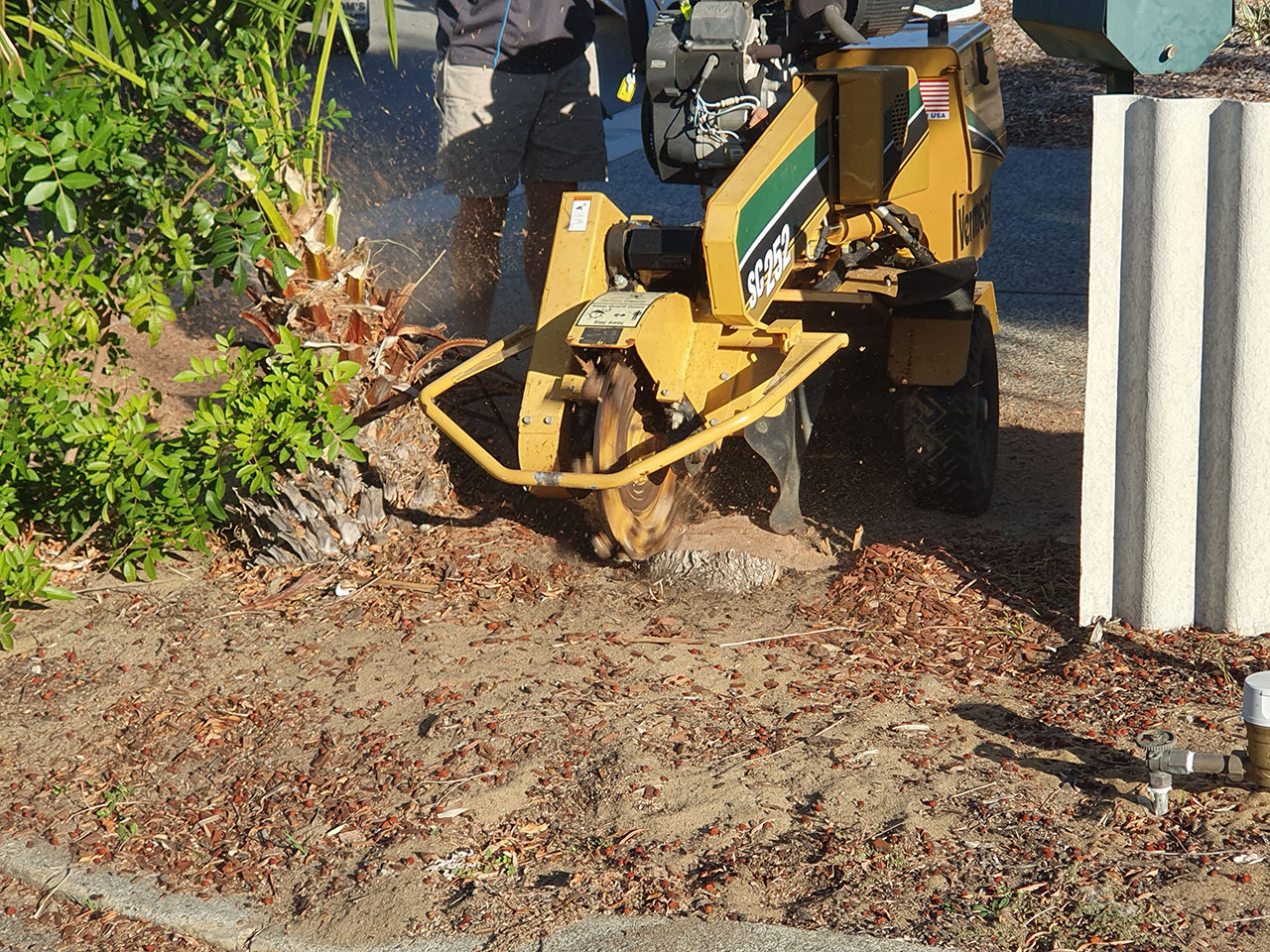 Grinding a Tree Stump Perth